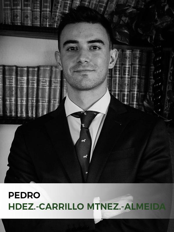 Pedro Hernández-Carrillo Mnez.-Almeida