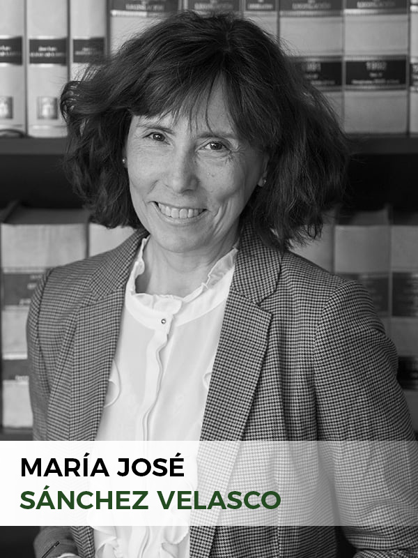 María José Sánchez Velasco